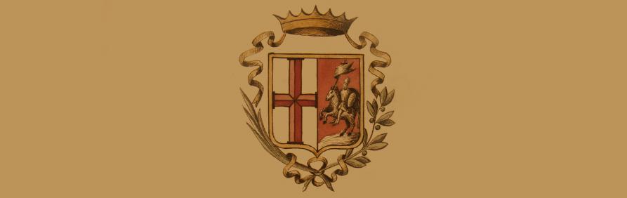 banner-organigramma